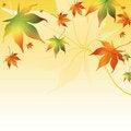 Free Beautiful Autumn Background Stock Images - 20660934