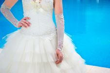 Free Bride In Beautiful Dress Royalty Free Stock Images - 20660309