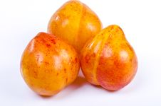 Free Apricots Stock Photos - 20663443