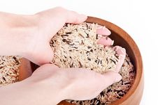 Free Rice In The Hands Stock Photo - 20664420