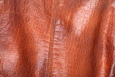 Free Leather Texture Stock Photos - 20665103