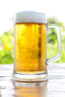 Free Three Mug Of Beer Stock Photography - 20666872