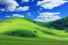 Landscape Of Grassland Stock Image