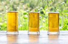Free Three Mug Of Beer Royalty Free Stock Photography - 20668217