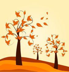 Free Autumn Tree Background Royalty Free Stock Photos - 20670658