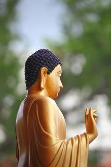 Free Chinese Budha Statue Stock Images - 20671524