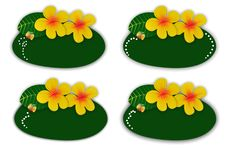 Flower Green Blackboard For Writing Menu Royalty Free Stock Photo