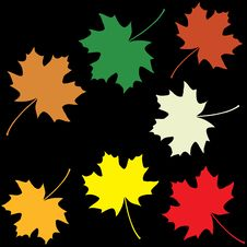 Free Set Of Colorful Maple Leaves Stock Image - 20673151