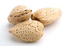 Free Almonds Stock Photo - 20674180