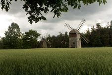 Two Old Windmills In The Field Of Corn