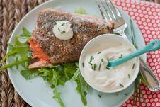 Free Salmon With Sauce Stock Photos - 20675483