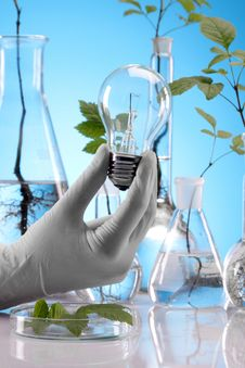 Free Ecologic Laboratory Royalty Free Stock Photos - 20675698
