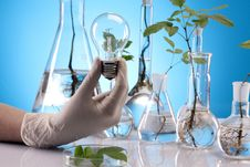 Free Ecologic Laboratory Royalty Free Stock Image - 20675706
