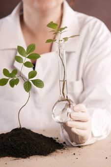 Free Ecologic Laboratory Stock Photos - 20675913