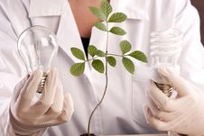 Free Ecologic Laboratory Stock Photos - 20676003