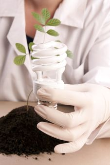 Free Ecologic Laboratory Royalty Free Stock Image - 20676006