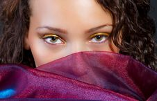 Free Attractive Hispanic Female And Silk Stock Photography - 20679772