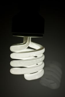 Free Energy Saving Light Bulb Royalty Free Stock Photos - 20681088