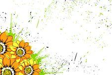 Free Beautiful Flowers Royalty Free Stock Image - 20681416