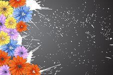 Free Beautiful Flowers Royalty Free Stock Image - 20681466