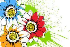 Free Beautiful Flowers Royalty Free Stock Photos - 20681508