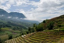 Free Rice Terraced Fields Royalty Free Stock Image - 20682646