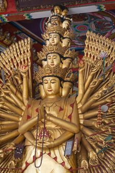 Free Guan Yin Thousand Hand Royalty Free Stock Images - 20682669