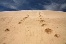 Free Footprints In Sand Dune Royalty Free Stock Images - 20683009