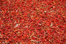 Free Red Chilli Peppers Stock Image - 20684161