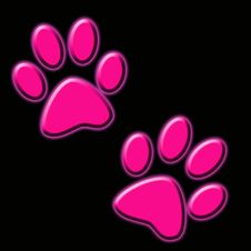 Free Footprint Stock Image - 20684661