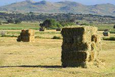 Free Hay Stock Photos - 20684843