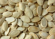 Free Pumpkin Seeds Stock Photography - 20685312