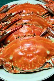 Free Crabs Stock Photography - 20685892