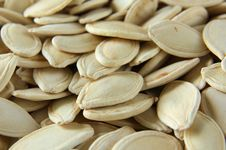 Free Pumpkin Seeds Stock Photography - 20686422