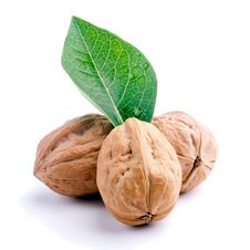 Free Walnuts Stock Images - 20689964