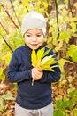Free Boy Walking In Autumnal Park Stock Photos - 20691703