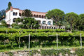 Free Italian Charming Villa In Vineyard Royalty Free Stock Images - 20692009