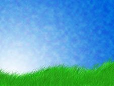 Free Green Grass Stock Image - 20690351
