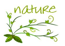 Free Nature Background - Green Ecology Vector Royalty Free Stock Photo - 20690725