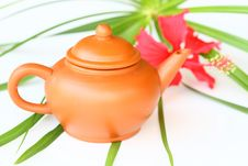 Free Teapot Stock Photo - 20690910