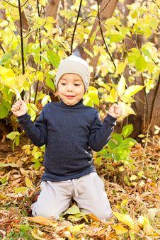 Free Boy Walking In Autumnal Park Royalty Free Stock Photos - 20691608