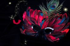 Free Carnival Mask Stock Image - 20691671