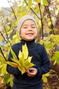 Free Boy Walking In Autumnal Park Royalty Free Stock Photos - 20691728