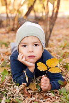 Free Boy Walking In Autumnal Park Stock Photos - 20691773
