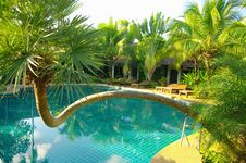 Free Pool Of Ressort  In Thailand Stock Photography - 20694022