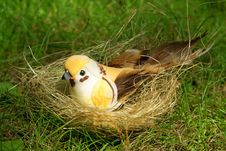 Toy Bird In The Nest Royalty Free Stock Photo