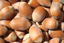 Free Harvest Of Fruits Nuts Royalty Free Stock Photos - 20696998