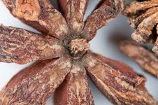 Free Star Anise Stock Image - 20697981