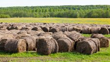 Free Straw Bales Stock Photography - 20698582