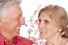 Free Aged Couple Portrait Stock Image - 20699331